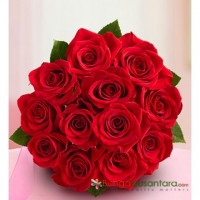 Mawar Merah Dozen Of Rose