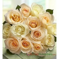 Peach Roses Opulent Pink Roses