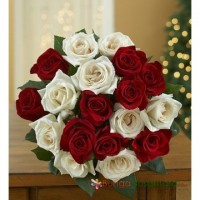 Mixed Roses White n Red Surprise