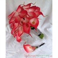 Lilies Red Coral