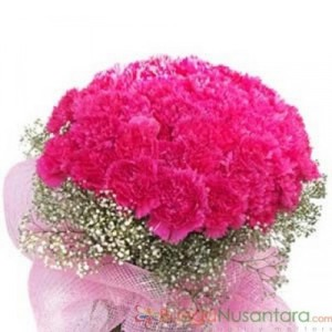 Bunga Hand Bouquet Carnation Famous Pink